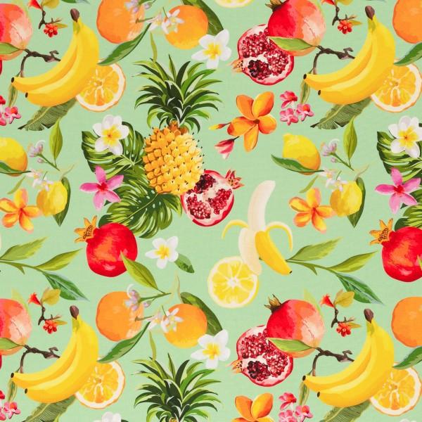 Canvas Baumwolle Früchte lindgrün 0,5 Meter