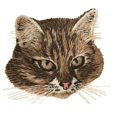 Bügelmotiv Katzenkopf,